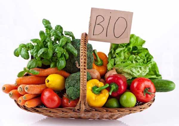 Lo sviluppo dell'alimentazione bio