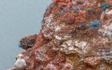 Lotta ai rifiuti marini: la posizione dell'UE