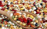 Meglio nutrire il mondo con i legumi secchi?