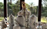 Mirabilia e Naturalia. Ceramiche e Carte