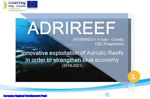 Modelli di business sostenibile per il mare Adriatico