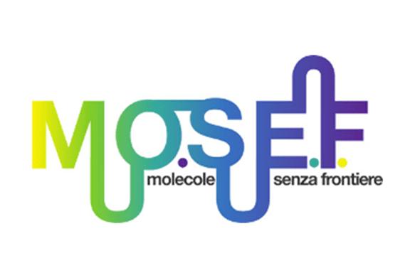 MoSeF