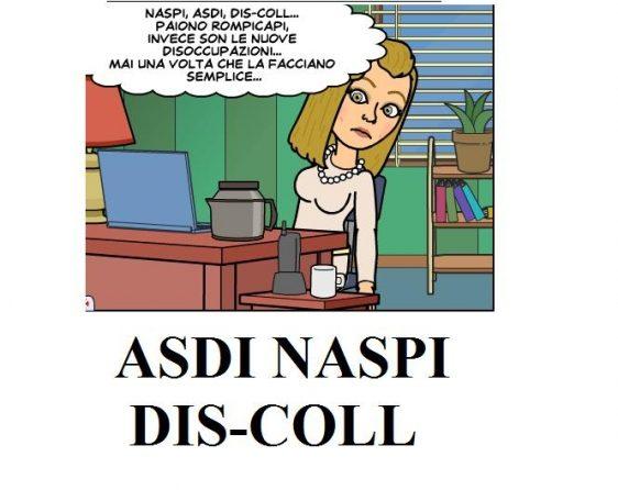 NASPI E FLEXICURITY CO.CO.PRO
