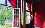 Neapolitan Gipsy Jazz a Palazzo Venezia e Omaggi a Pino Daniele