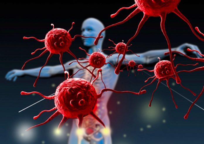 Neoplasie tumorali: il ruolo degli ibridi e delle proteine