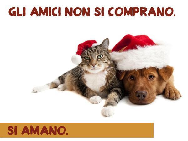 NIENTE ANIMALI SOTTO L'ALBERO
