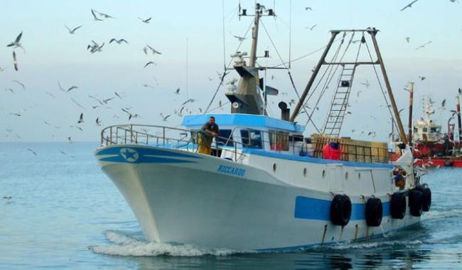 Nuovi accordi europei sulla pesca