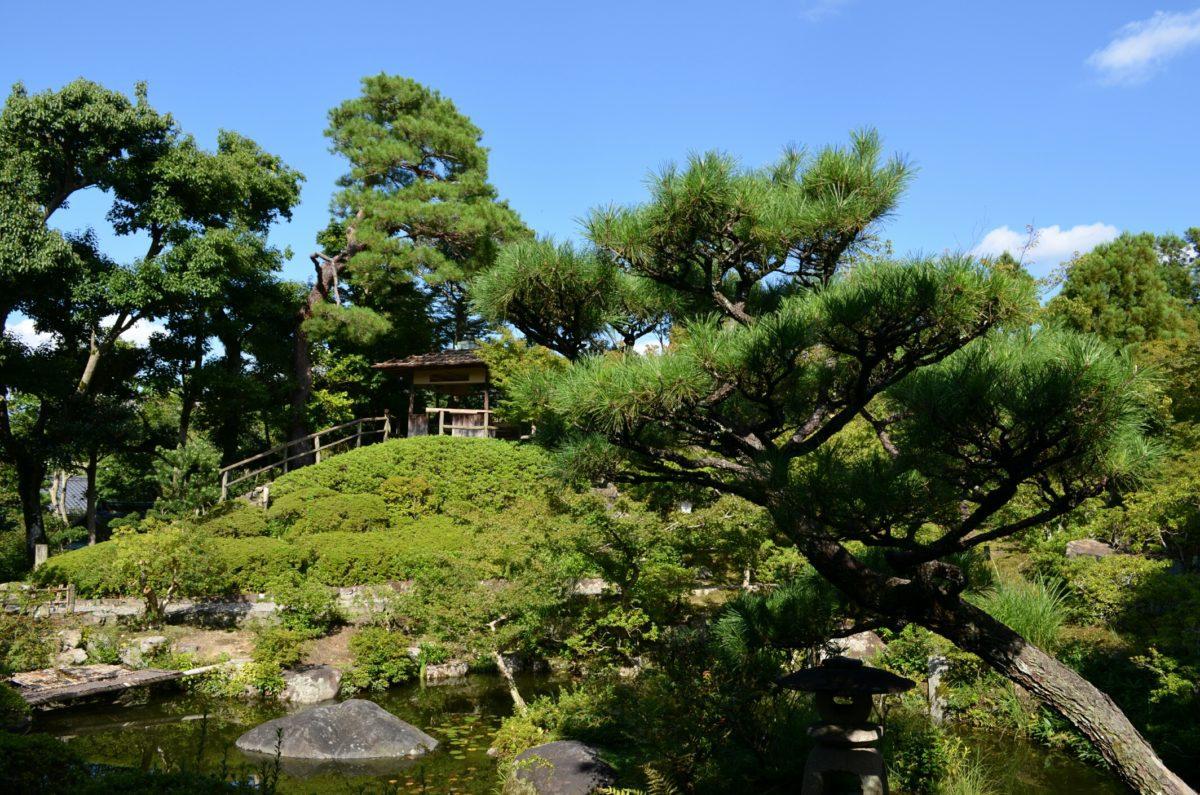 Parchi per Kyoto in Comune