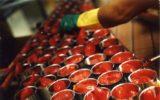 Pomodoro da industria: cercare un accordo con il sud