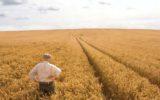 Positivo l'impegno del Governo a sostegno del settore agricolo