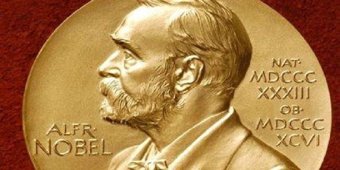 Premio Nobel per la letteratura 2018: le cause della sospensione