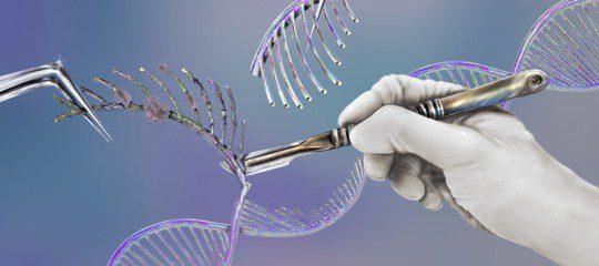 Prime editing: una nuova tecnica di editing genetico