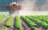 Prodotti fitosanitari negli alimenti