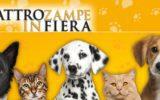 Quattrozampeinfiera: ritorna la mostra canina a Napoli