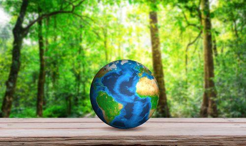 Ricerca e innovazione per lo sviluppo di biomateriali sostenibili