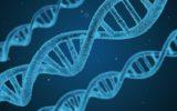 Ricerca: i geni che regolano lo comparsa di tumori nella sclerodermia