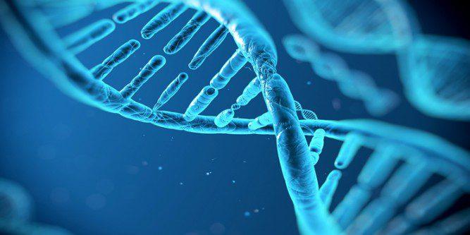 Ricerca Scientifica e Innovazione Tecnologica