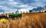Risorse fitogenetiche per l'alimentazione e l'agricoltura