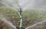 Riutilizzo dell'acqua per l'irrigazione agricola: l'accordo provvisorio dell'UE