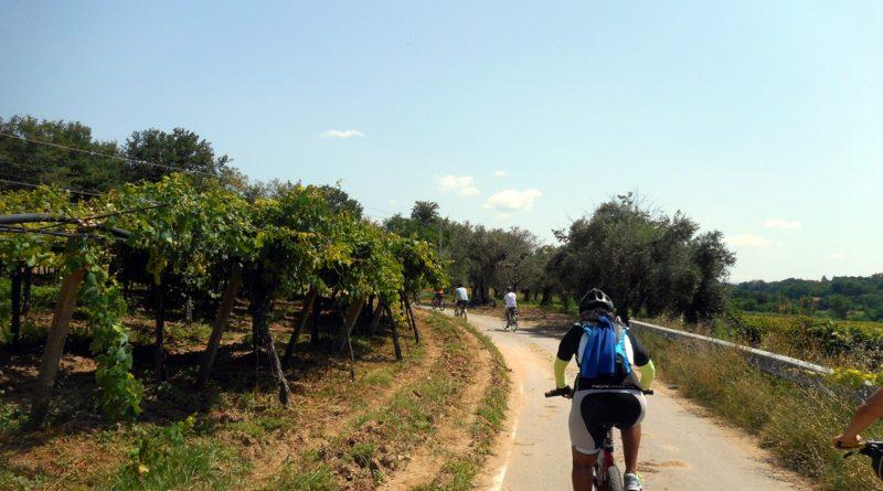 Sannio Bike Tour