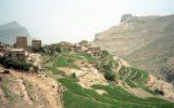 Save the Children e l'ultimo rapporto sulla situazione nello Yemen