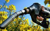 Scarti agricoli usati per produrre carburanti ecologici