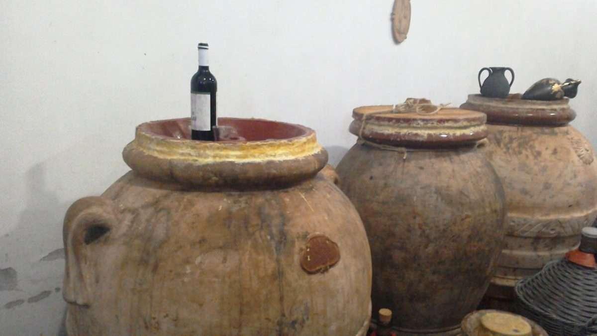 Sicilia: continuano i lavori nella vigna degli antichi romani