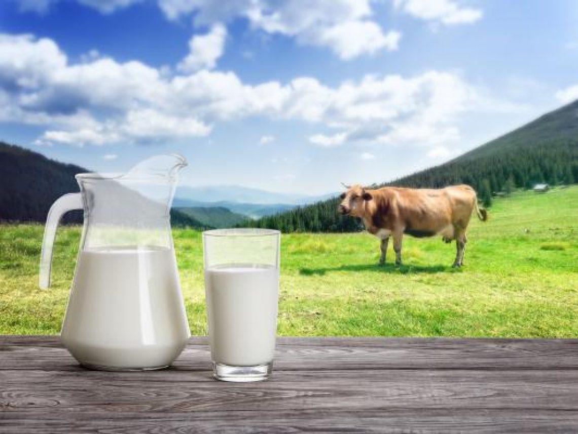 Sicurezza alimentare: al via il progetto 'Farm-Inn'