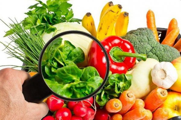 Sicurezza alimentare: le norme europee sulla trasparenza e la sostenibilità