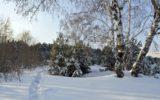 Sicuri con la neve