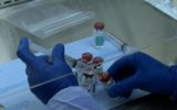 Sindrome alcolica fetale: scoperto un nuovo metodo d'indagine