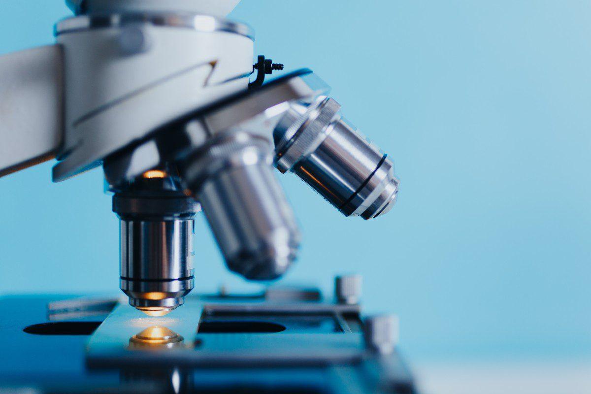 Sistemi complessi: dalla finanza alla biologia