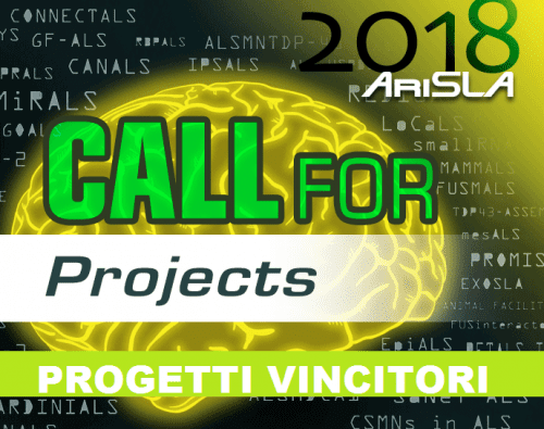 SLA: call for projects