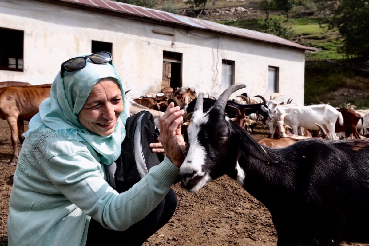 Slow Food e FAO insieme per rilanciare l'agricoltura siriana