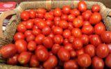 Pomodoro sottopagato 8 Cent/Kg