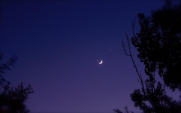 """""""Su l'ali del destrier verso la Luna"""""""