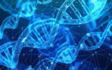 Tumore al colon: gli ultimi risultati della genetica