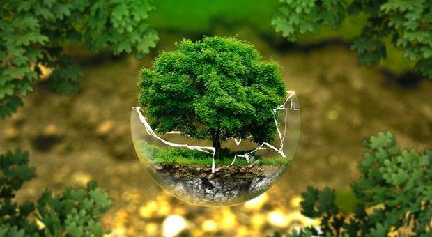 Tutela dell'ambiente: siglato un patto per il Sistema di protezione e sorveglianza degli acquiferi