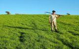 Un'agricoltura sostenibile