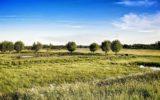 Un'agricoltura sostenibile per fermare i cambiamenti climatici