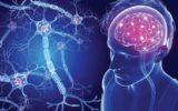 Un caschetto con elettrodi per contrastare l'affaticamento da sclerosi multipla