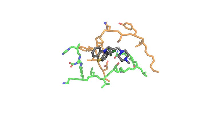 Un farmaco antipsicotico contro il tumore al pancreas