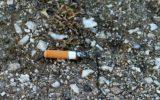 Un modo innovativo per combattere la sporcizia delle strade