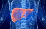 Un sistema per la sopravvivenza dei pazienti con tumore al fegato?