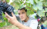 Un terzo degli italiani sogna per i figli un futuro da agricoltore
