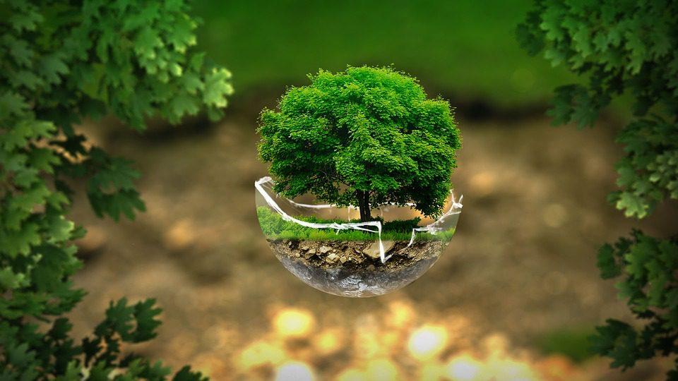 """Una """"carta"""" per l'ambiente"""