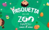 Una Pasquetta allo Zoo di Napoli
