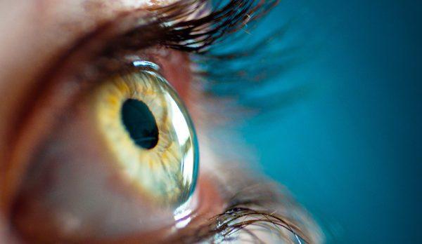"""Una retina """"made in Italy"""" per recuperare la vista"""
