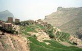 Unicef: gli allarmi nello Yemen