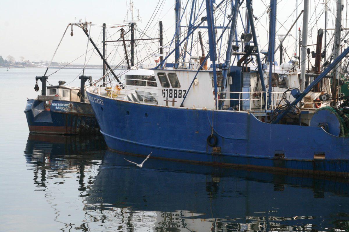 Unione Europea: nuove norme sulla pesca